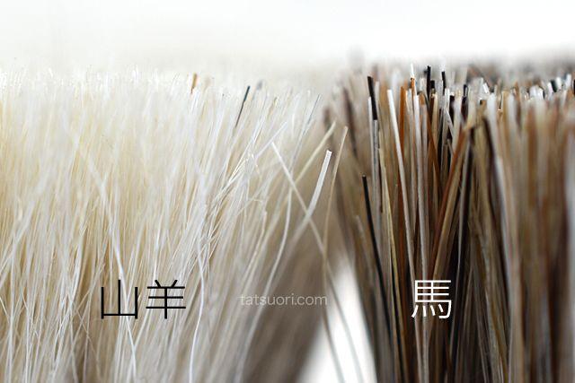 山羊毛ブラシと馬毛ブラシの毛先の比較